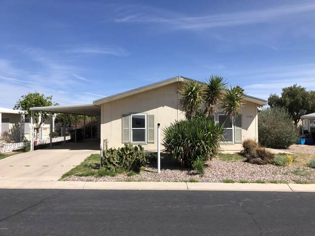 3709 N Indiana Avenue, Florence, AZ 85132 (MLS #6055112) :: Brett Tanner Home Selling Team