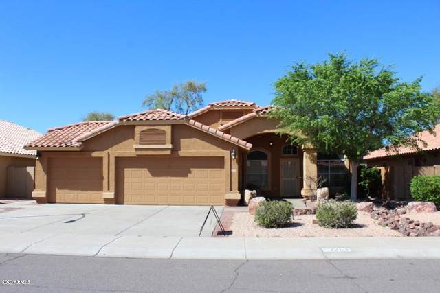 2202 N 127TH Lane, Avondale, AZ 85392 (MLS #6055173) :: The Daniel Montez Real Estate Group