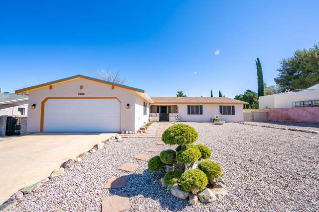 4401 Monarch Drive, Sierra Vista, AZ 85635 (MLS #6055182) :: Nate Martinez Team