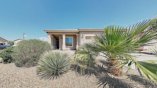 19298 W Monroe Street, Buckeye, AZ 85326 (MLS #6055230) :: Brett Tanner Home Selling Team