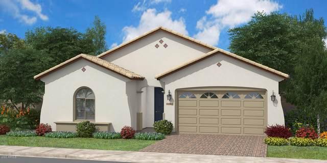 2813 W Wilcox Playa Drive W, San Tan Valley, AZ 85142 (MLS #6055234) :: The Bill and Cindy Flowers Team