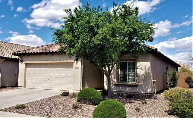 7410 W Sonoma Way, Florence, AZ 85132 (MLS #6055249) :: Conway Real Estate