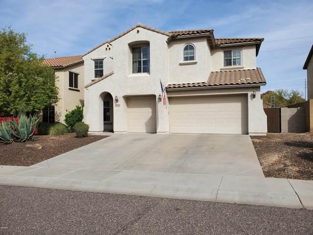 5220 W Bent Tree Drive, Phoenix, AZ 85083 (MLS #6055255) :: The Laughton Team