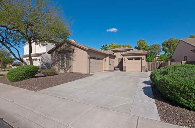 6805 S Sapphire Way, Chandler, AZ 85249 (MLS #6055282) :: Brett Tanner Home Selling Team
