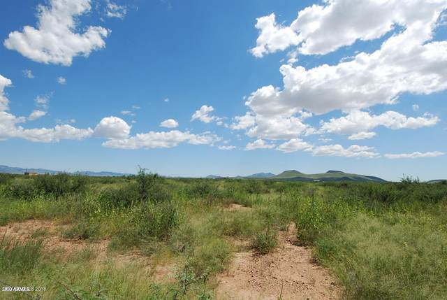 TBD E Collie Trail, Hereford, AZ 85615 (MLS #6055317) :: The Laughton Team