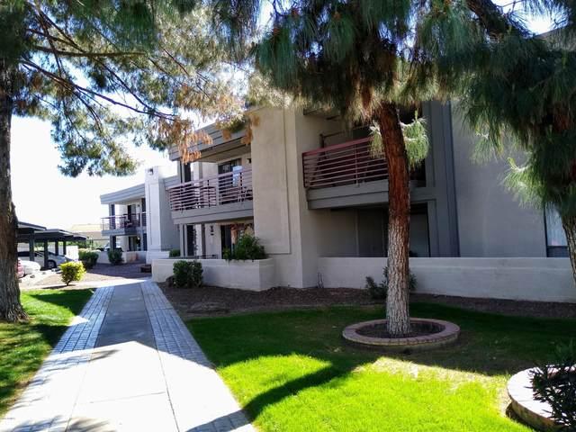 3405 W Danbury Drive D113, Phoenix, AZ 85053 (MLS #6055325) :: Conway Real Estate