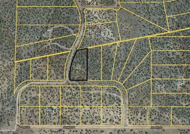 1860 W Louise Lane, Ash Fork, AZ 86320 (MLS #6055333) :: The W Group