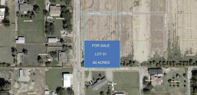 XXXXX S Mandarin Drive, Queen Creek, AZ 85142 (MLS #6055343) :: Revelation Real Estate