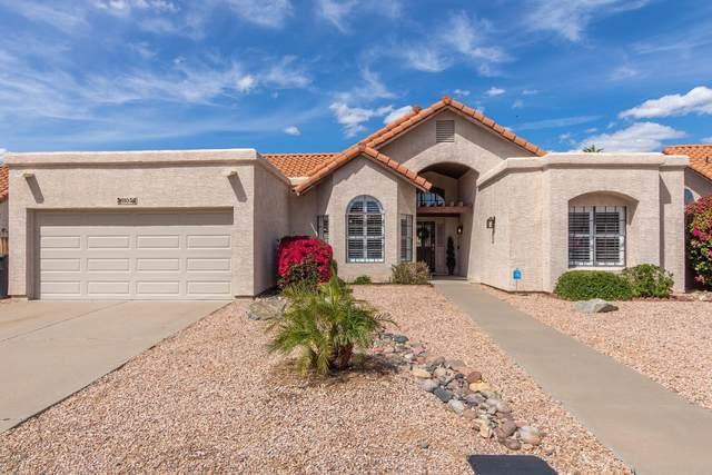 11056 E Mary Katherine Drive, Scottsdale, AZ 85259 (MLS #6055393) :: My Home Group