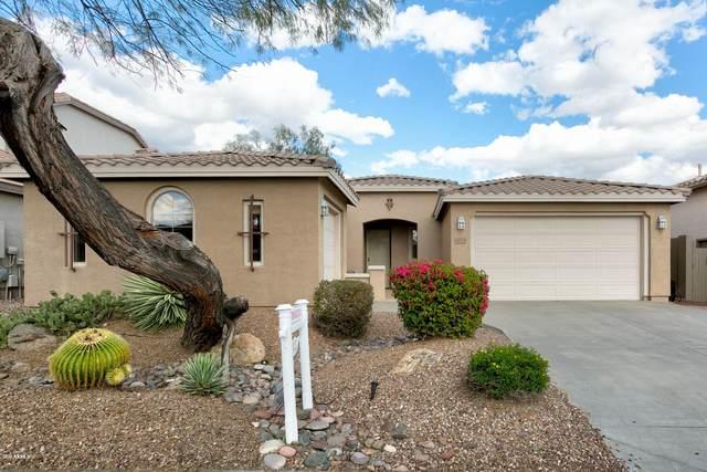 40313 N Justice Way, Anthem, AZ 85086 (MLS #6055415) :: Conway Real Estate
