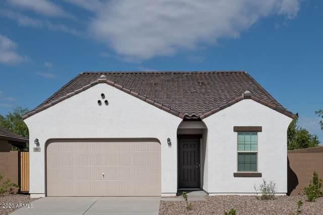 430 W Powell Road, San Tan Valley, AZ 85140 (MLS #6055442) :: The Laughton Team
