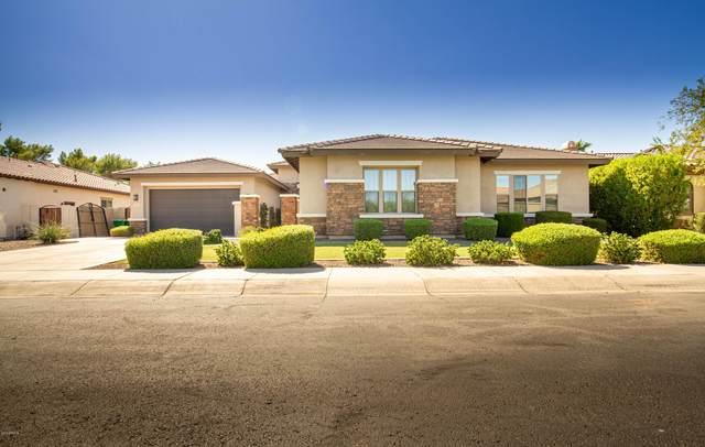 4832 N Barranco Drive, Litchfield Park, AZ 85340 (MLS #6055443) :: The Garcia Group