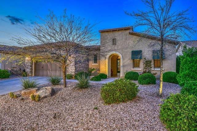 27452 N Cardinal Lane, Peoria, AZ 85383 (MLS #6055562) :: Long Realty West Valley