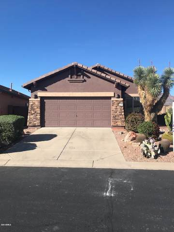 10676 E Second Water Trail, Gold Canyon, AZ 85118 (MLS #6055665) :: Lucido Agency