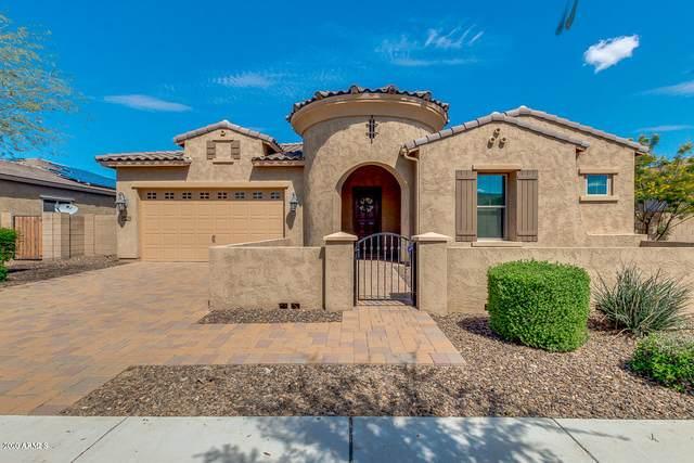 20118 E Quintero Road, Queen Creek, AZ 85142 (MLS #6055692) :: Revelation Real Estate