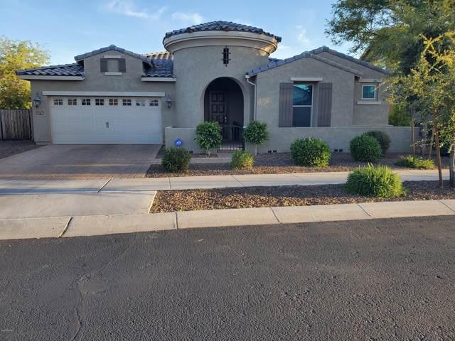 20219 E Rosa Road, Queen Creek, AZ 85142 (MLS #6055789) :: Revelation Real Estate