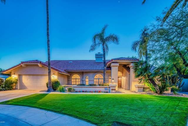 8606 E San Lucas Drive, Scottsdale, AZ 85258 (MLS #6055813) :: Conway Real Estate
