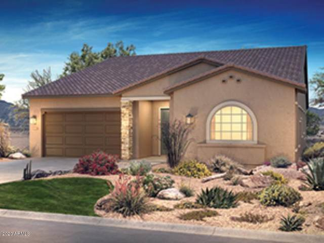 13414 W Evergreen Terrace, Peoria, AZ 85383 (MLS #6055836) :: Long Realty West Valley