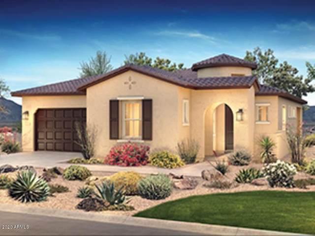 13450 W Evergreen Terrace, Peoria, AZ 85383 (MLS #6055846) :: Riddle Realty Group - Keller Williams Arizona Realty
