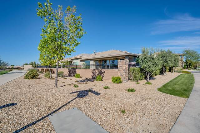 36086 N Desert Tea Drive, San Tan Valley, AZ 85140 (MLS #6055874) :: Arizona Home Group
