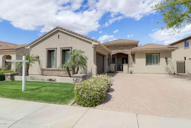 260 W New Dawn Drive, Chandler, AZ 85248 (MLS #6055876) :: Relevate | Phoenix