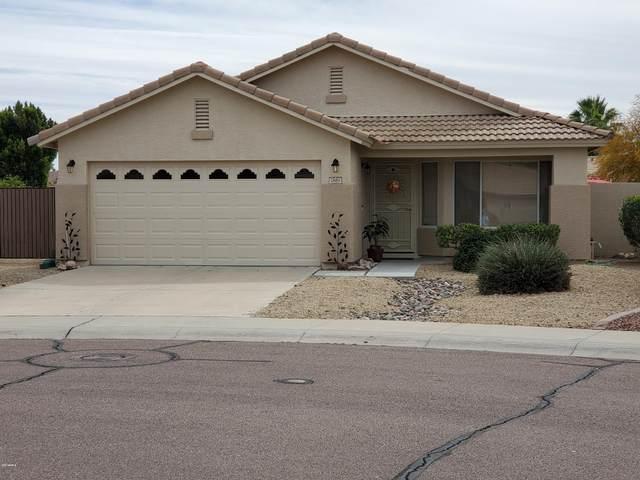 7683 W Angels Lane, Peoria, AZ 85383 (MLS #6055903) :: Howe Realty