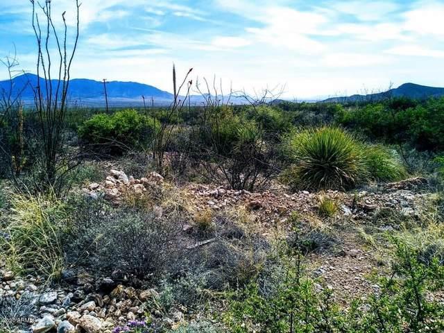 Lot 88 Cochise Lane, Bisbee, AZ 85603 (MLS #6055955) :: Kepple Real Estate Group