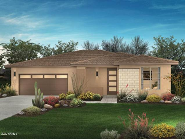 13198 W Steed Ridge Road, Peoria, AZ 85383 (MLS #6055967) :: Long Realty West Valley