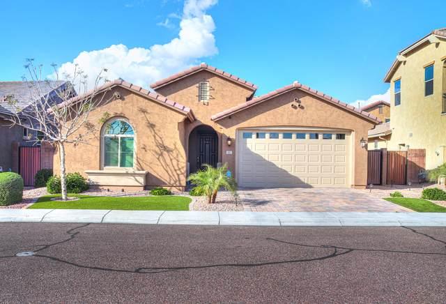 92 E Tonto Place, Chandler, AZ 85249 (MLS #6055977) :: Relevate | Phoenix