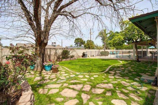 8738 E Sandalwood Drive, Scottsdale, AZ 85250 (MLS #6055996) :: Brett Tanner Home Selling Team