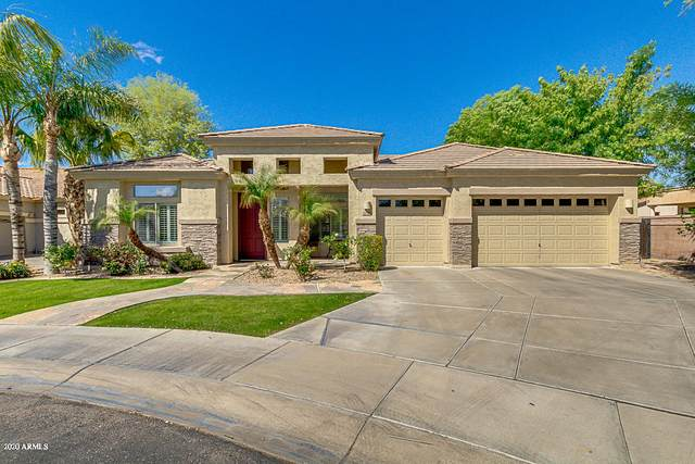 252 W Macaw Drive, Chandler, AZ 85286 (MLS #6056014) :: Long Realty West Valley