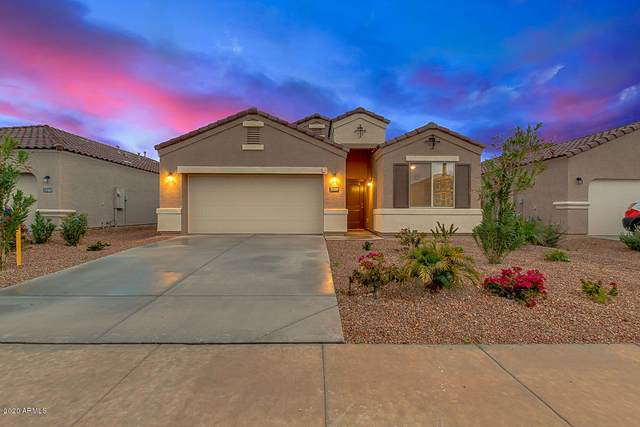 31069 W Picadilly Road, Buckeye, AZ 85396 (MLS #6056015) :: Nate Martinez Team