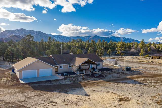 6865 N Rain Valley Road, Flagstaff, AZ 86004 (MLS #6056068) :: The Bill and Cindy Flowers Team