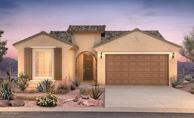 26972 N 71st Drive, Peoria, AZ 85383 (MLS #6056246) :: My Home Group
