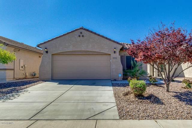 7227 W Candlewood Way, Florence, AZ 85132 (MLS #6056247) :: Conway Real Estate