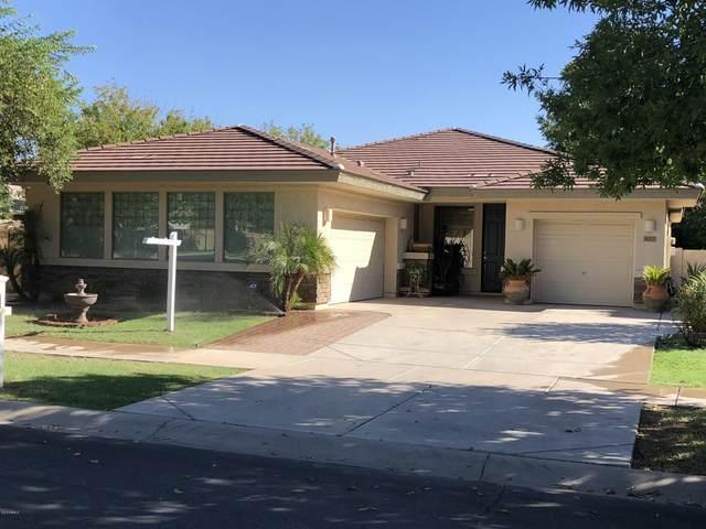 4073 E Park Avenue, Gilbert, AZ 85234 (MLS #6056293) :: The Bill and Cindy Flowers Team