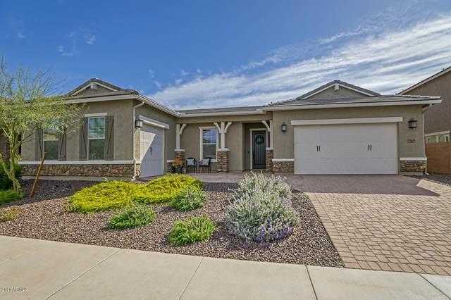 25469 N 103RD Avenue, Peoria, AZ 85383 (MLS #6056353) :: Howe Realty