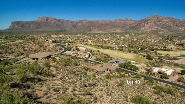 4264 S Avenida De Angeles, Gold Canyon, AZ 85118 (MLS #6056366) :: Long Realty West Valley