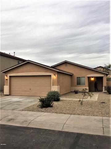 5634 E Lush Vista View, Florence, AZ 85132 (MLS #6056418) :: Kepple Real Estate Group
