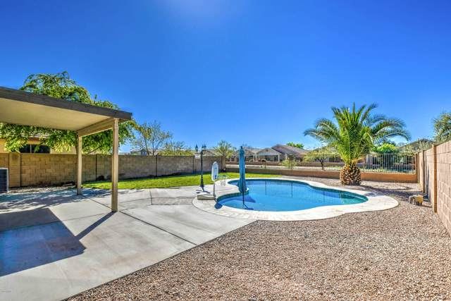 115 W Dexter Way, San Tan Valley, AZ 85143 (MLS #6056493) :: Brett Tanner Home Selling Team