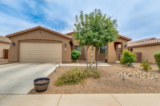 87 W Sweet Shrub Avenue, Queen Creek, AZ 85140 (MLS #6056495) :: Revelation Real Estate