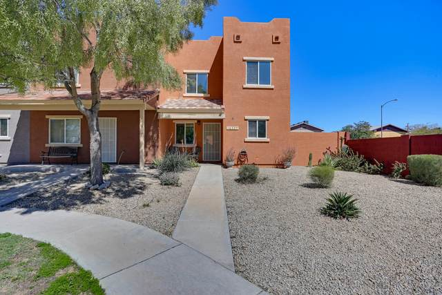 16325 N Desert Sage Street, Surprise, AZ 85378 (MLS #6056516) :: Nate Martinez Team