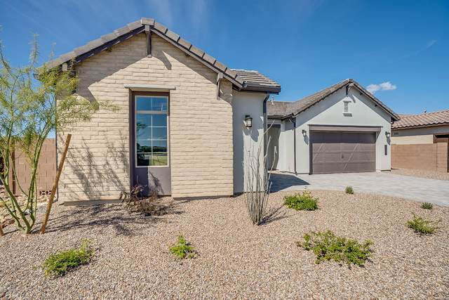 24414 N 96TH Avenue, Peoria, AZ 85383 (MLS #6056533) :: Maison DeBlanc Real Estate