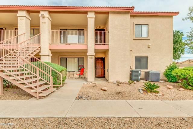 1440 N Idaho Road #1064, Apache Junction, AZ 85119 (MLS #6056566) :: The Kenny Klaus Team