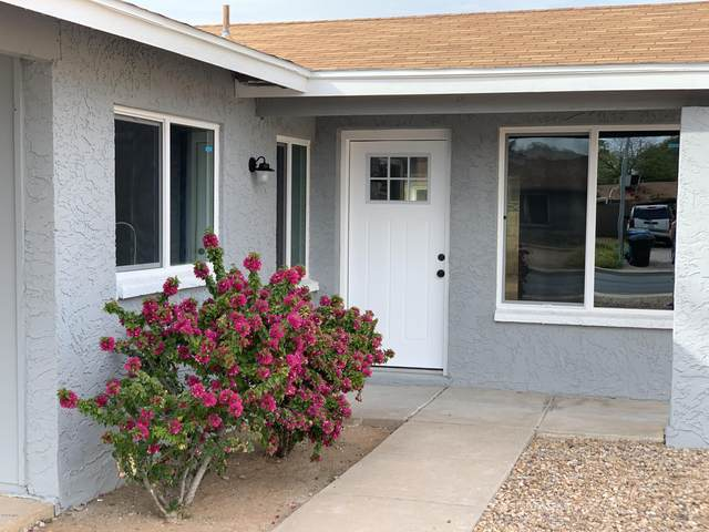 3454 E El Moro Avenue, Mesa, AZ 85204 (MLS #6056585) :: Yost Realty Group at RE/MAX Casa Grande