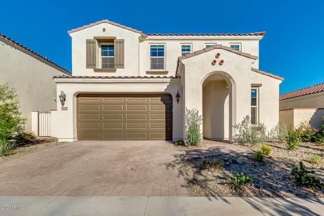 5235 S Hadron, Mesa, AZ 85212 (MLS #6056600) :: My Home Group