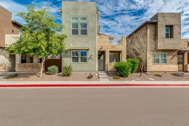 7126 W Kent Drive, Chandler, AZ 85226 (MLS #6056616) :: The Daniel Montez Real Estate Group
