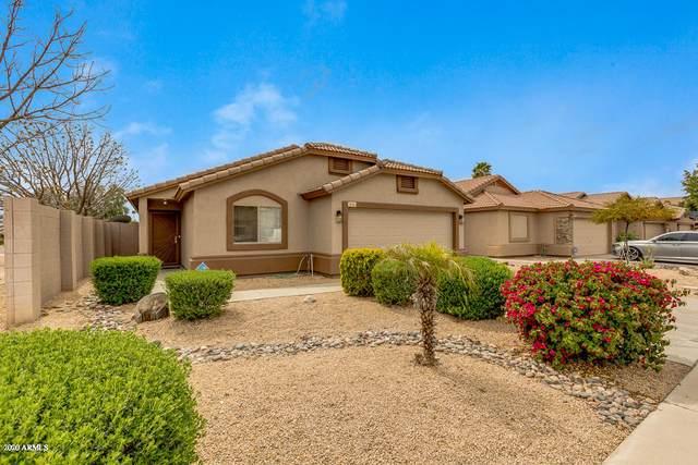 6711 W Northview Avenue, Glendale, AZ 85303 (MLS #6056673) :: Conway Real Estate