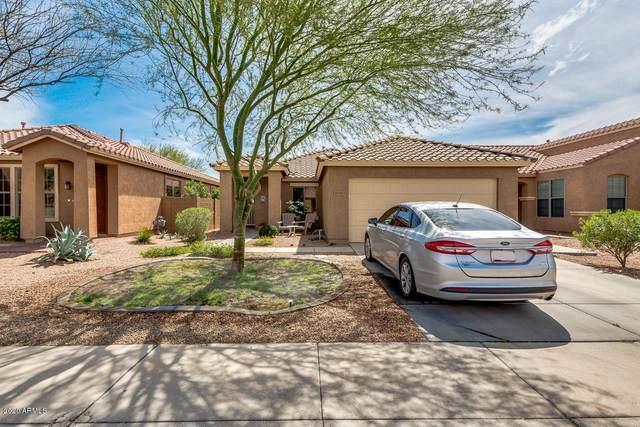 46115 W Holly Drive, Maricopa, AZ 85139 (MLS #6056687) :: Brett Tanner Home Selling Team