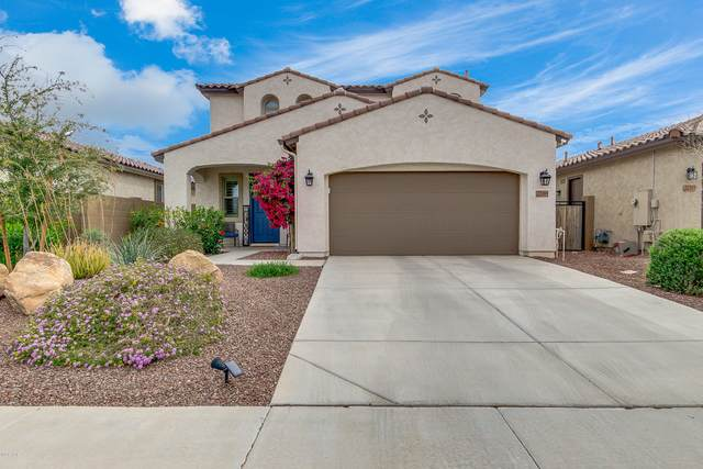 22369 N 99TH Lane, Peoria, AZ 85383 (MLS #6056737) :: Conway Real Estate